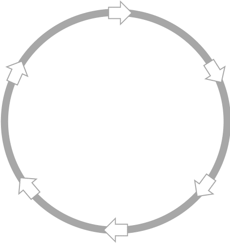 Circle with arrows image