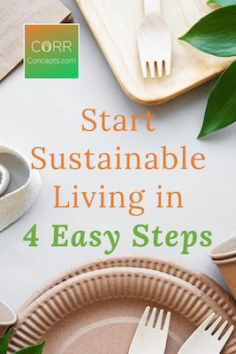 How to Live More Sustainably in 4 Easy Steps Pinterest image
