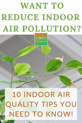 Ways to Reduce Indoor Air Pollution Naturally-Pinterest pin