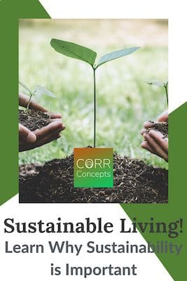 Why Sustainability is Important for Sustainable Living Pinterest Pin
