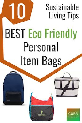 Sustainable Living Tips_Eco Friendly Personal Item Bags-Pinterest pin
