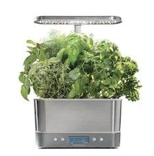 AeroGarden Indoor Gardening