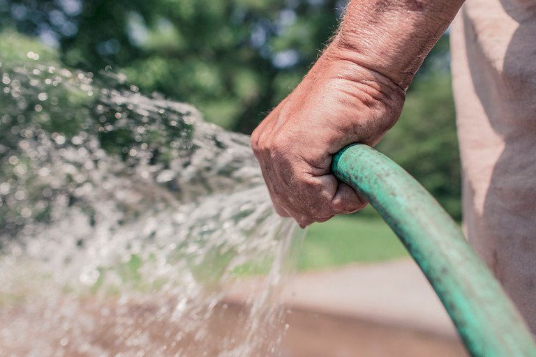 Person holding hose with water running