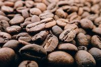 Coffee beans | Coffee - Sustainable Foods - Conscious Consumer