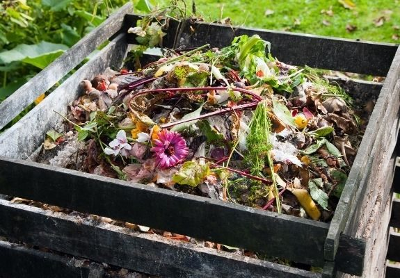 Composting bin with food scraps