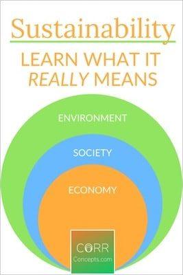 Sustainability 101-What is Sustainability Pinterest image