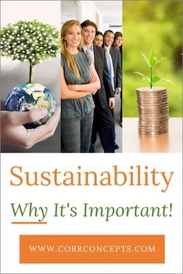 Sustainability 101-Why It's Important-Pinterest image