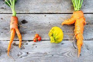 Upcycled vegitables image
